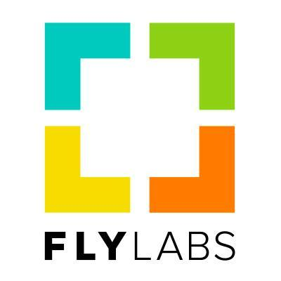 Google Acquires FlyLabs